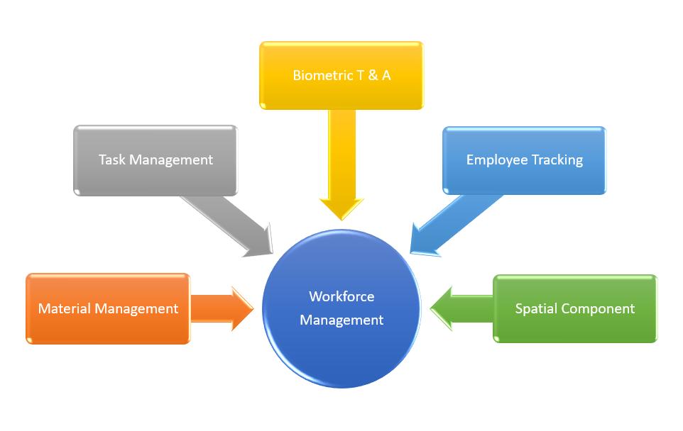 Workforce Matrix